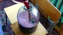 Как приготовить виноградное вино в домашних условиях