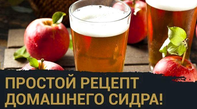 Вино из яблочного сока в домашних условиях простой рецепт